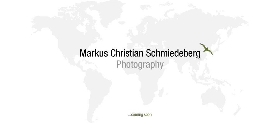 mcs-pictures